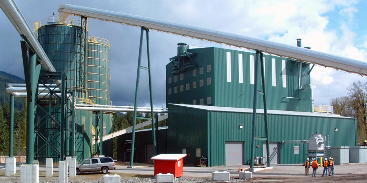 Wellons Field Erected Biomass Boiler
