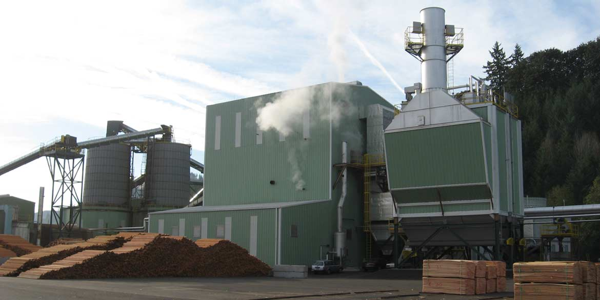 Wellons Biomass Steam Boiler System
